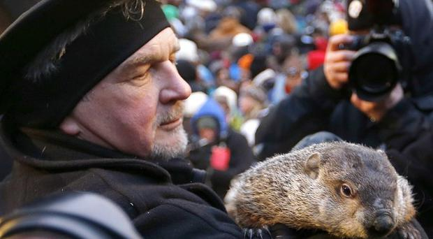 Groundhog Club co-handler John Griffiths holds the weather predicting groundhog, Punxsutawney Phil (AP)
