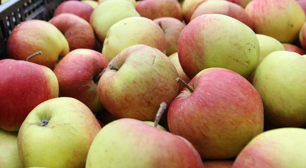 The Apple Shop in Norfolk is to be renamed The Norfolk Cider Company from Easter