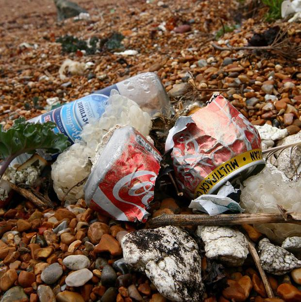 Coca-Cola was one of the brands most commonly found during a litter pick