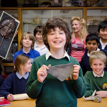Ten-year-old Bruno Debattista shows off his fossil to the rest of the Natural History Club (PA/Oxford University Museum of Natural History)