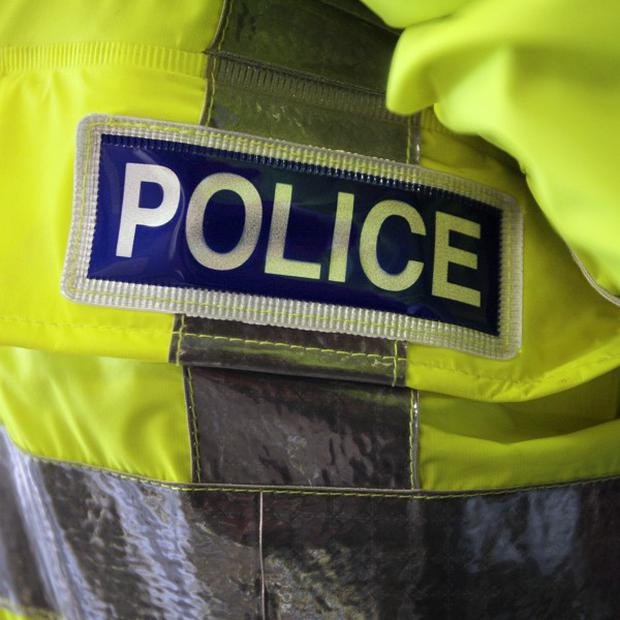 A girl of 12 has been raped in woodland at a play park, police said