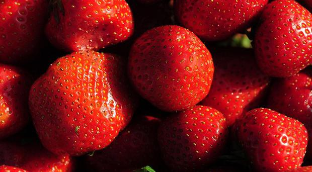 A Vale of Glamorgan farmer has started growing strawberries