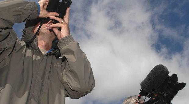 Birdwatchers descended on Trimley Marshes to catch a glimpse of the rare Pacific swift