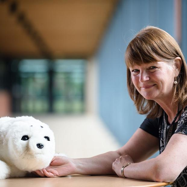 Professor Glenda Cook of Northumbria University with the robotic harp seal