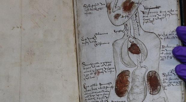 Manuscripts and archive manager John Hodgson looks through a 19th century book about the brain at John Rylands Library in Manchester