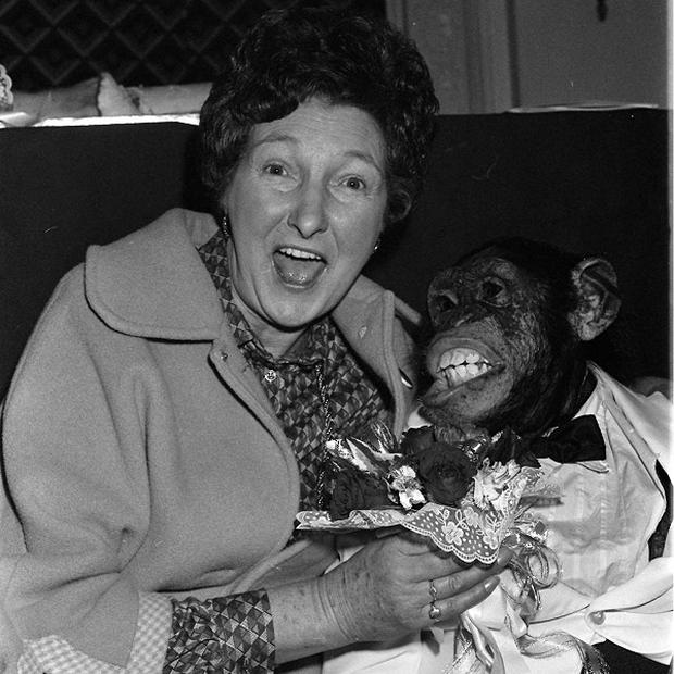 Louis the chimp, seen here with actress Pat Coombs in 1982, represented tea brand PG Tips