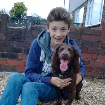 Ryan Jones, 13, with his sprocker spaniel Snickers who had more than a kilo of loose chippings rattling round in its stomach