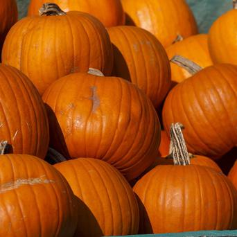 Three pumpkins found in a woman's luggage at a Montreal airport were stuffed with cocaine, officials said