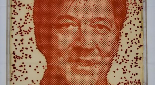 A portrait of Stephen Fry grown from his own bacteria (The Big Bang UK Young Scientists and Engineers Fair/PA)