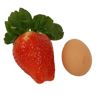 The Spanish giant strawberries are larger than the average egg (Marks and Spencer/PA)