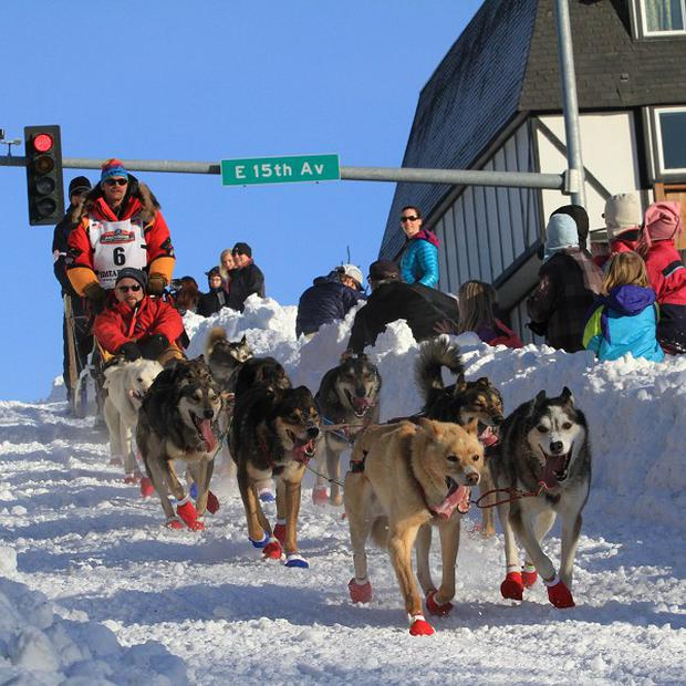 Mitch Seavey drives his team down Cordova Street during the ceremonial start of the Iditarod Trail Sled Dog Race in Anchorage (AP)