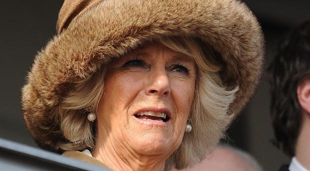 The Duchess of Cornwall and her son, Tom Parker Bowles, at the Cheltenham festival