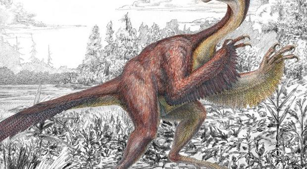 Undated handout artist impression issued by the Carnegie Museum of Natural History of Anzu wyliei, a bird-like dinosaur nicknamed the