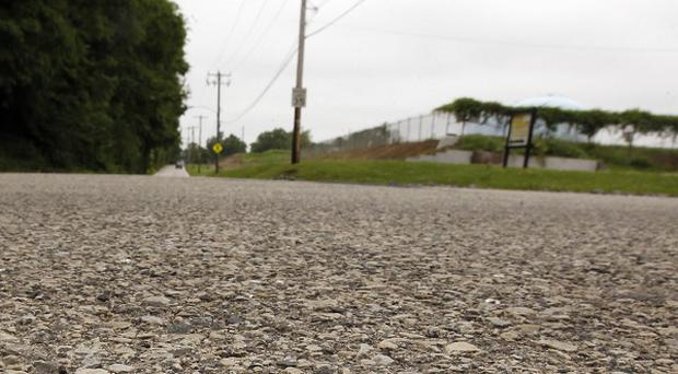 A baby toad sits on a road in the Roxborough area of Philadelphia (AP)