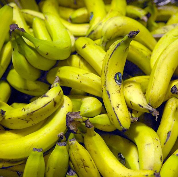 The cocaine was found hidden in plastic fruit concealed among a shipment of bananas