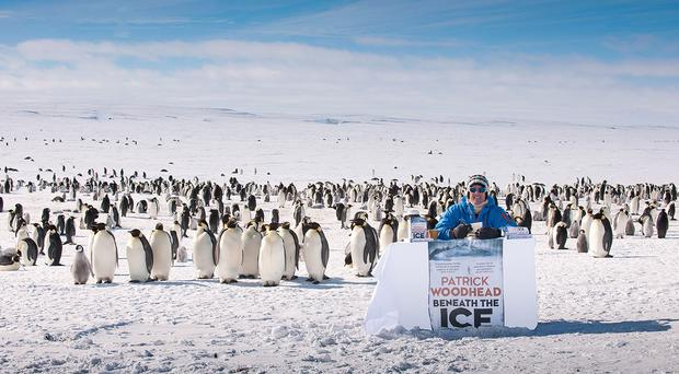Patrick Woodhead launches his thriller Beneath The Ice in Antarctica in the company of 4,000 emperor penguins, the most southerly book launch in the world