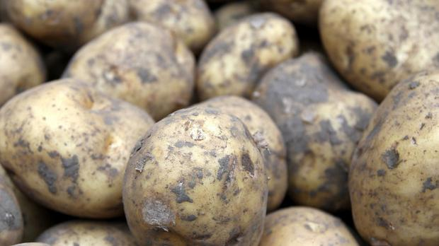 Antioxident Vitamin C is found in potatoes, kale, cabbage and celery