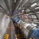 The Large Hadron Collider was immobilised by a weasel (Cern)