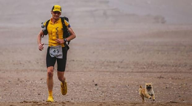 Dion Leonard and the dog became firm friends in the Gobi Desert (4Deserts/PA Wire)