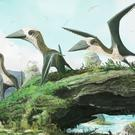 An artist's impression of the pterosaur (Dr Mark Witton/PA)