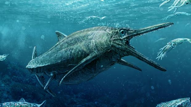 Scots predator that ruled the seas 170 million years ago finally unveiled