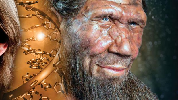Neanderthals Disappearing from Modern Human Genome