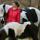 Shetland pony Nemo dried out back in his farm with Lynn Paterson and Nola after being rescued from a swollen river