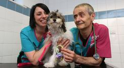 Vet nurse Karen Nicholson with vet Nigel Crane holding dummies similar to the ones eaten by Rosie (PDSA/PA)