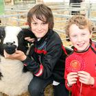 Ollie the champion Sherling ram with Joseph Duff (12) and Philip Hegarty (12) from Omagh