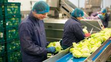 Willowbrook Foods has a staff of around 350, including many EU workers
