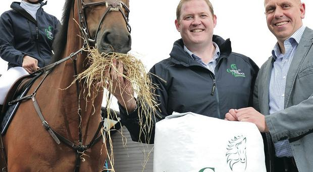 Equestrian and Farm Feeds (EFF) in Lisburn is investing more than £100,000 in new products for the global equestrian industry