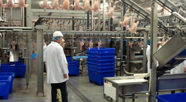Workers at poultry giant Moy Park are to be balloted over strike action following union claims of