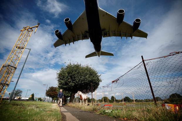 A passenger airline flies over a field with horses on its approach to Heathrow