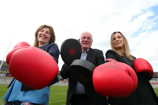 Boxing clever: from left, Lisa Keys of the IoD, Peter Martin of Director Development Ireland, and Fiona Hampton of Ulster Rugby