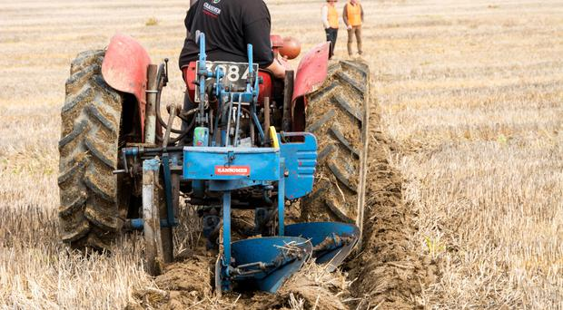 Agri-food businesses in Northern Ireland must continue to evolve