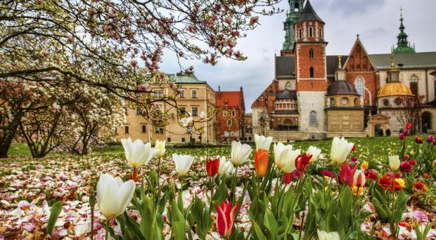 Krakow, Poland, where this year's Ruotes Europe will take place