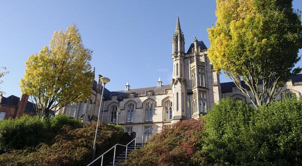 Expansion of the Ulster University's Magee campus has been halted after the construction firm was placed into administration