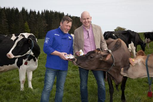 David Graham, Around Noon's executive head chef, with Bryan Boggs, Clandeboye Estate Yoghurt's general manager