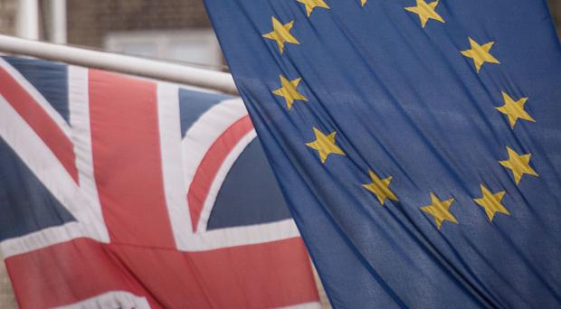 In its latest warning on the EU referendum, Moody's said a Brexit vote would hit the entire European economy.
