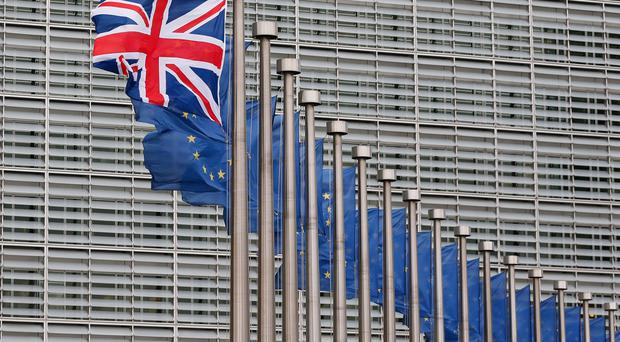 The economic arguments for the UK remaining a member of the European Union are compelling, which seems to have been recognised by respondents to the Belfast Telegraph's survey