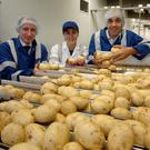 Wilson's Country chief executive Angus Wilson (right) on the potato packing lines at the company's factory near Craigavon.