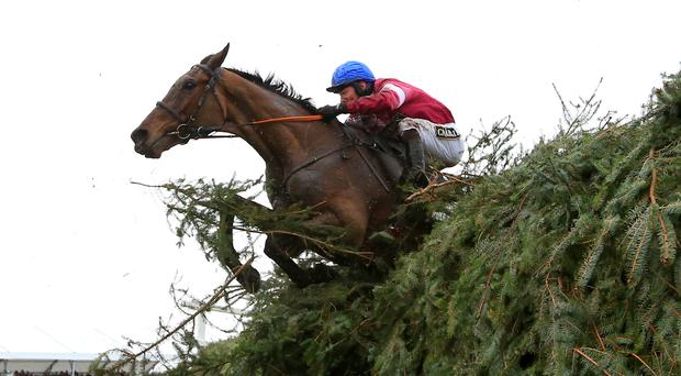 Gala Coral said a good Grand National result helped offset losses from