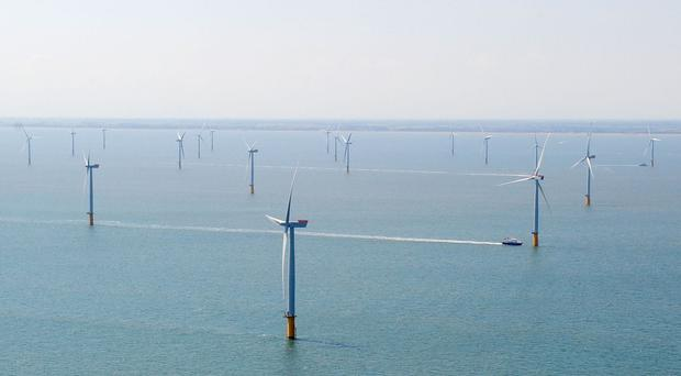 Siemens warned that the UK's hopes of becoming a global leader in the offshore wind industry would be harmed by a Brexit vote