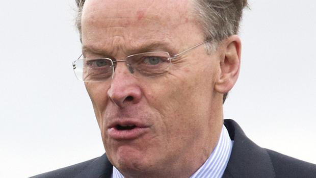 Vincent de Rivaz indicated his support for Remain