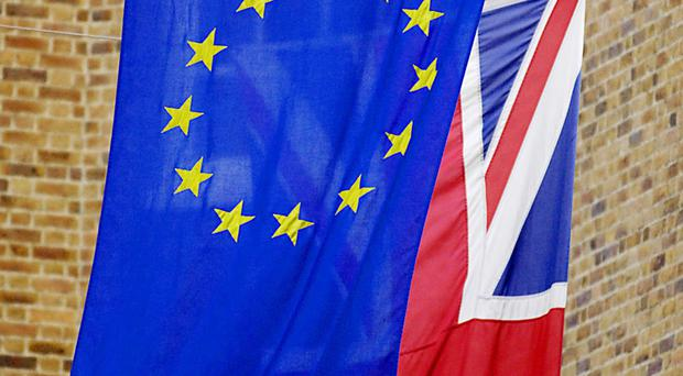 Brexit could leave the UK in an economic mess which may take up to a decade to bring under control, a political expert has said.