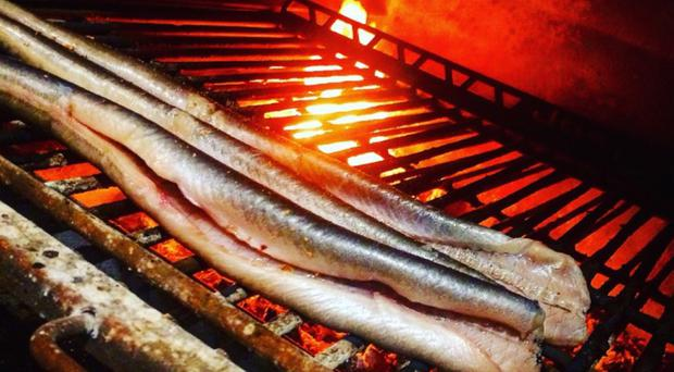Lough Neagh eels cooking on a grill