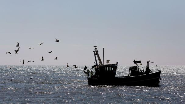 The ASI says the EU's catch quotas have resulted in 1.7 million tonnes of fish being thrown back into the sea each year
