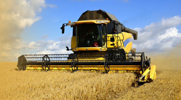 Northern Ireland's agri-food industry is famously resilient and has faced many challenges
