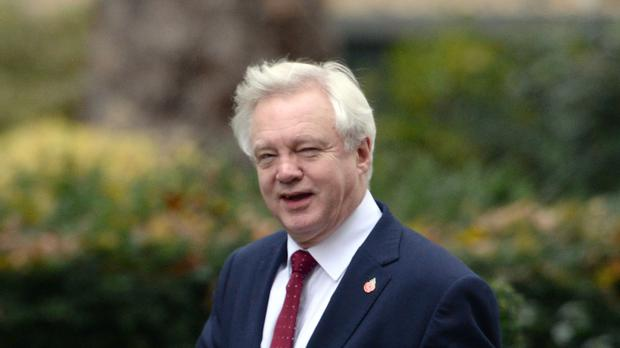 David Davis told MPs that ministers want to