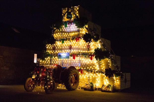 The six-metre tall Mash Direct Christmas tree which has been constructed out of potato boxes